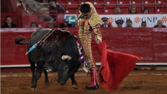 El toro en México. Por acá entre fantasmas y toreros de carne y hueso