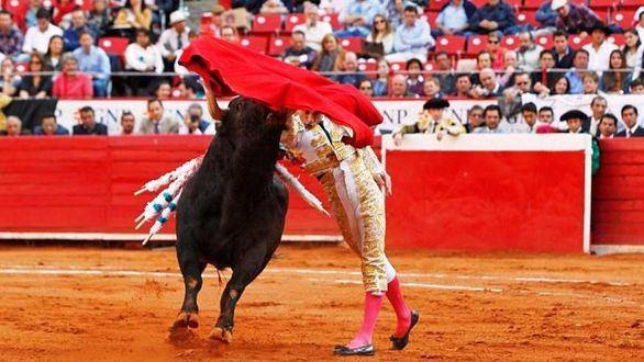 El Toro en México. Se le puso color de hormiga panzona a la empresa