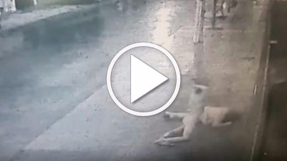 Un hombre desnudo agrede brutalmente a una mujer en plena calle