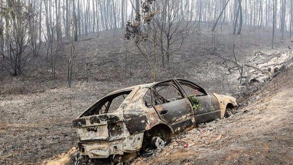 Continúan activos cuatro focos en el incendio de Portugal