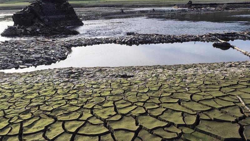La falta de lluvias convierte este año en el octavo más seco desde 1981