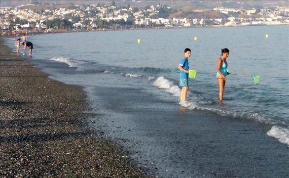 Playa de Torre del Mar, en Málaga, una de las ciudades analizadas en el estudio.