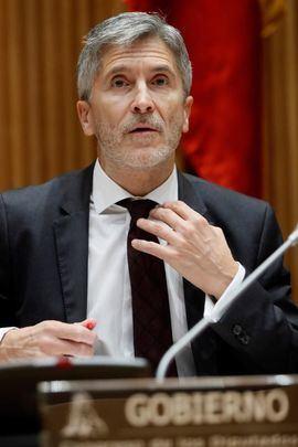 Fernando Grande- Marlaska comparece en la comisión de Interior del Congreso