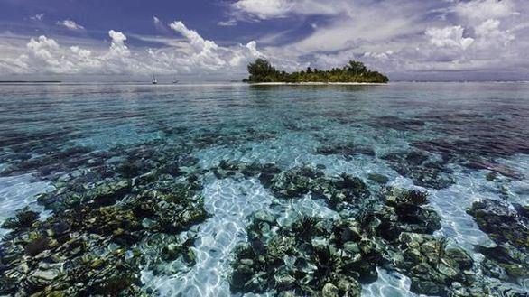 El arrecife de coral de Belice, fuera de la lista de lugares en peligro de la Unesco