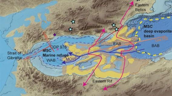 Un archipiélago volcánico conectó África y Europa hace 10 millones de años