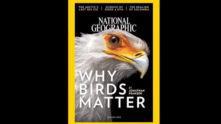 National Geographic cumple 130 años como líder en divulgación científica