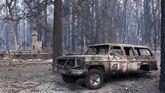 Al menos 42 muertos en el incendio más mortífero de la historia de California