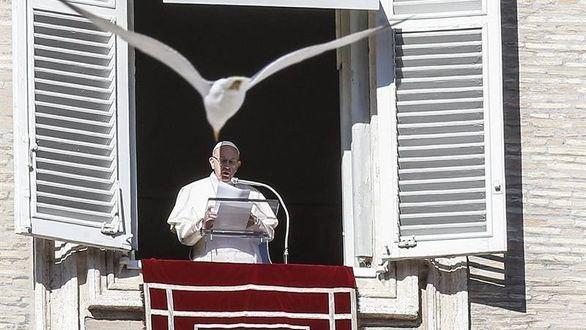 Francisco: 'La buena política está al servicio de la paz'