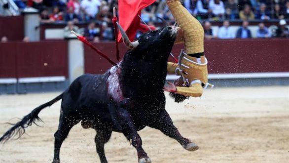 Los toros de El Pilar ganan en Las Ventas y Gonzalo Caballero es herido