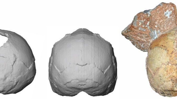 Hallado en Grecia el fósil de humano moderno más antiguo fuera de África