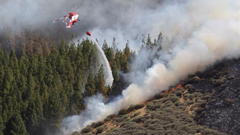 Los bomberos logran contener el incendio en la cumbre de Gran Canaria