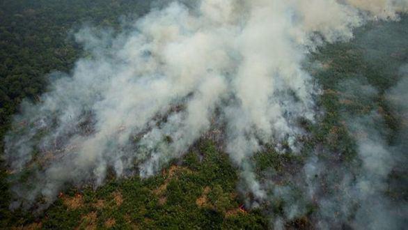 Crece la alarma por los incendios en la Amazonía y Trump ofrece su ayuda