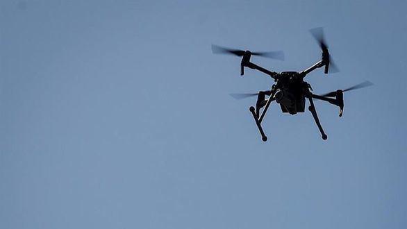 Interior blinda Zarzuela, Moncloa y Cortes a drones que amenacen su seguridad