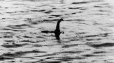 En 1934, el cazador Marmaduke Wetherell dijo haber tomado esta fotografía del monstruo. 60 años después, en 1994, el propio Wetherell confesaría que todo era un montaje. Lo que se ve en la instantánea es un submarino de juguete.
