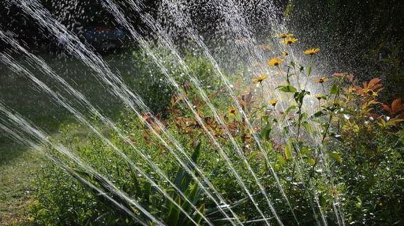 ¿Sabes cómo regar tu jardín cuando no estás en casa?