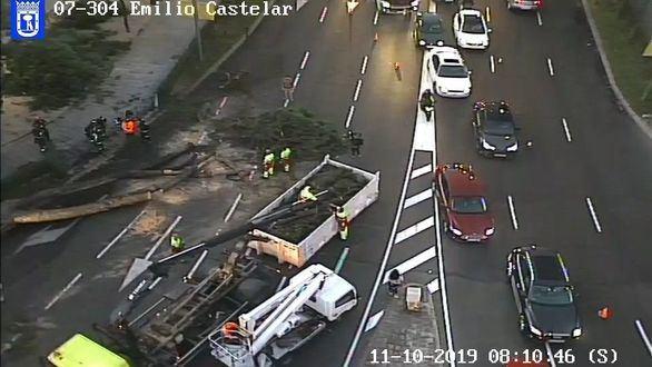 Caos en Madrid por la caída de un árbol de 15 metros en el Paseo de la Castellana