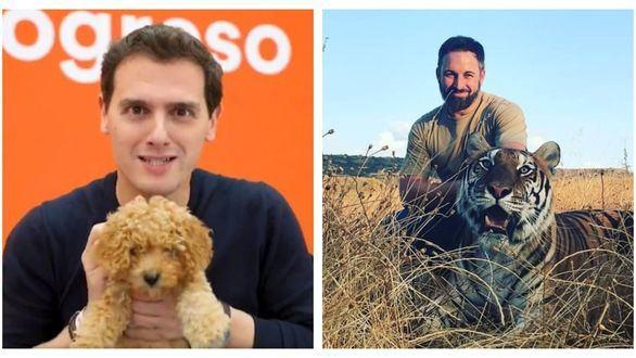 Burla en las redes por el cachorrito de Rivera y el tigre de Abascal