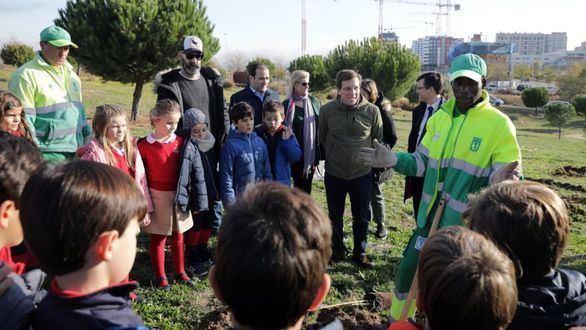 Madrid se tiñe de verde: el Ayuntamiento plantará más de 15.500 árboles hasta marzo