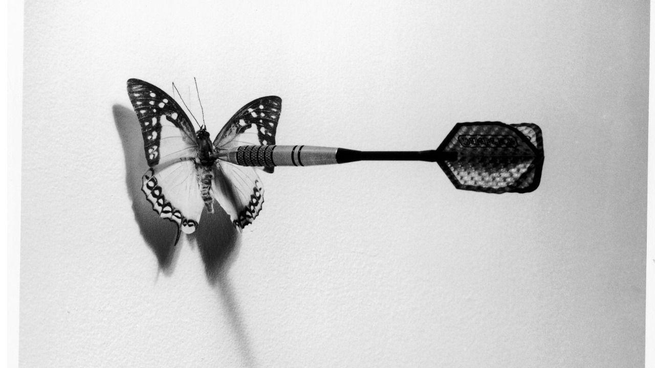 La naturaleza de las cosas a través de las fotografías de Chema Madoz