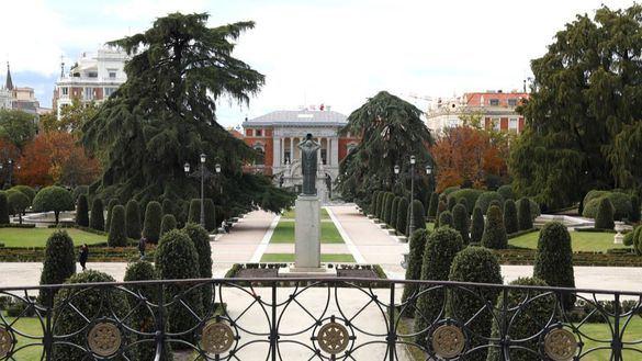 Madrid, reconocida 'Ciudad arbórea del mundo 2019' por FAO y la Fundación Arbor Day