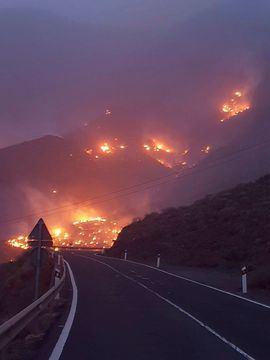 Incendio declarado en la localidad de Tasarte, en el municipio de La Aldea, en Gran Canaria.