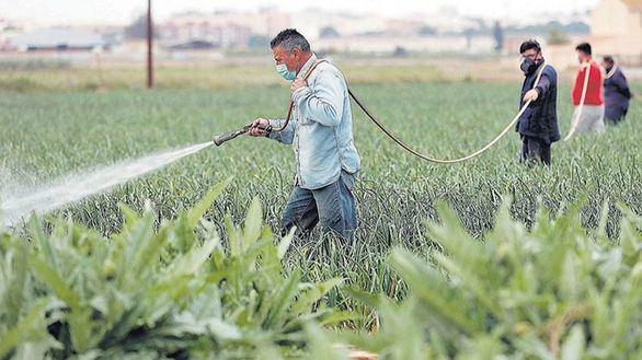 Moncloa permitirá que 80.000 parados trabajen en el campo sin perder su subsidio