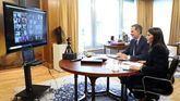 Don Felipe y doña Letizia mantienen una videoconferencia con el Pleno de la Real Academia Española de la Lengua (RAE)