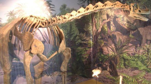 Reconstrucción del esqueleto de Turiasaurus riodevensis expuesta en la sede de Dinópolis en Riodeva.