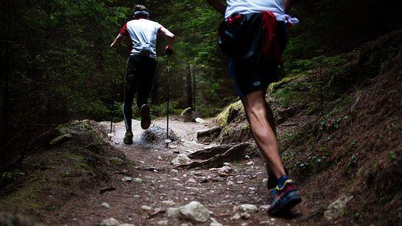 Una simple prueba analítica puede desvelar los efectos moleculares de hacer ejercicio