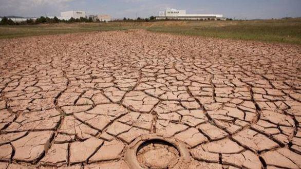 2020, camino de convertirse en el año más caluroso desde que se tienen registros