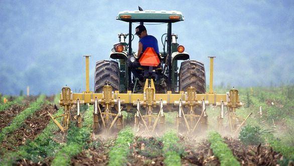 Banco Santander financió al sector agro con 5.155 millones de euros hasta junio