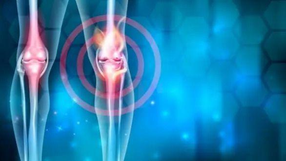 Científicos españoles descubren un mecanismo que podría revertir la artrosis
