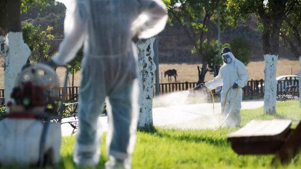 Virus del Nilo: un hombre de 77 años, séptimo fallecido