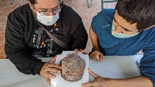 Hallado en Huesca uno de los mayores yacimientos de huevos de dinosaurio