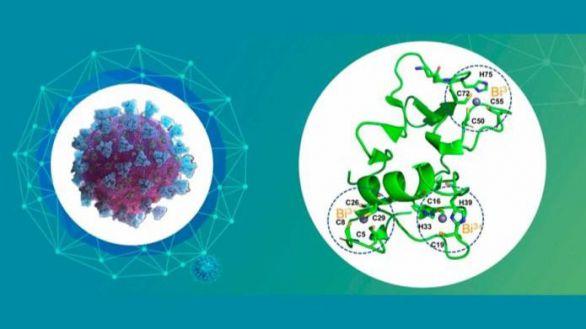 Nueva estrategia antiviral para combatir la Covid-19