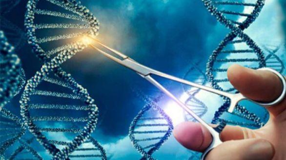 Éxito del sistema CRISPR contra el cáncer metastásico