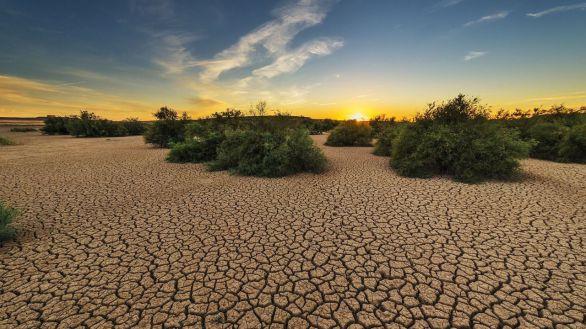 Pese al confinamiento, 2020 será el tercer año más cálido desde que se tienen registros