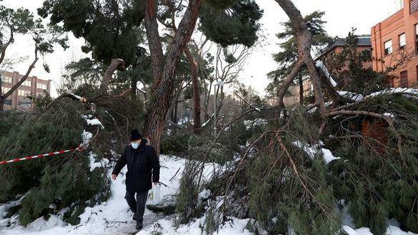 Madrid cifra en 1.398 millones de euros los daños causados por el temporal