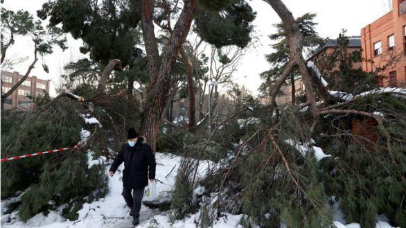 El Gobierno decreta como zona catastrófica a Madrid y otros territorios
