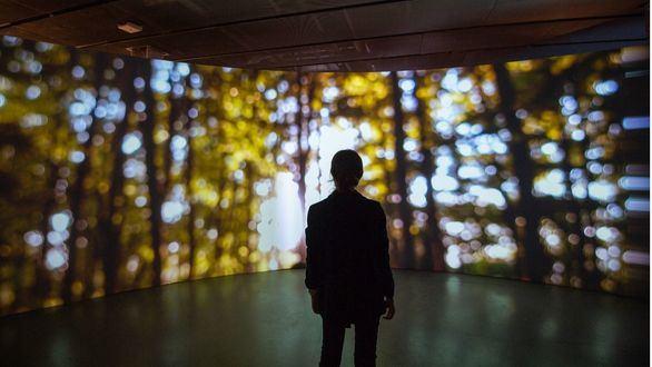 La relación entre naturaleza y tecnología a través de las obras de videomapping de Lemercier