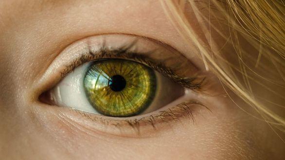 Identificados 50 nuevos genes que influyen en el color de los ojos
