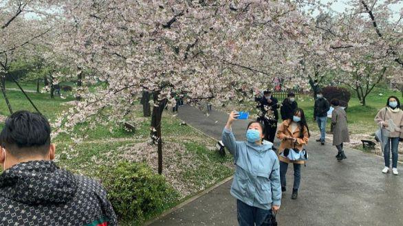 Ya es primavera en Wuhan, epicentro hace un año de la pandemia