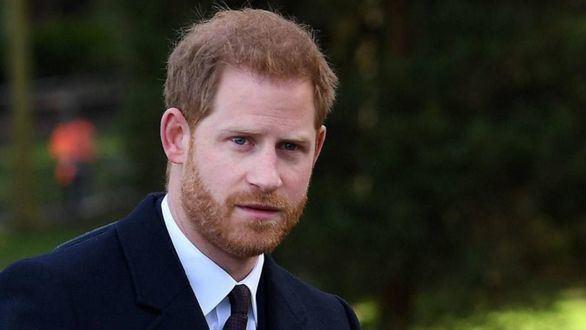 El Príncipe Enrique luchará contra la desinformación en su segundo empleo