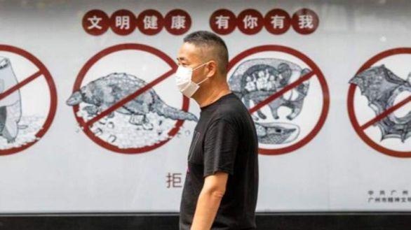 La OMS se inclina por el origen animal del virus pero no despeja ninguna incógnita
