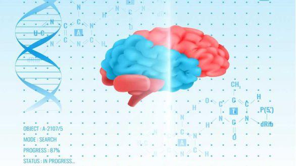 Avance en Alzheimer: hallan 13 nuevos genes raros implicados en su aparición