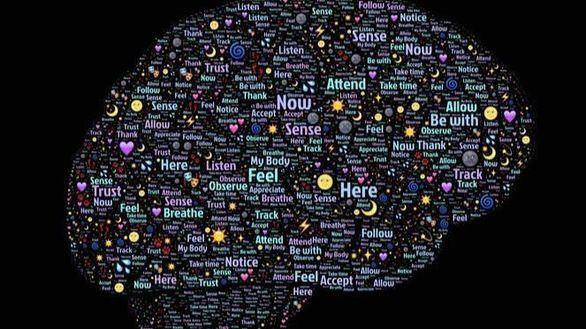 Revelan cuál es el mecanismo cerebral detrás del aprendizaje autónomo