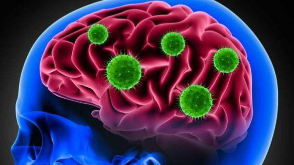 Este descubrimiento arroja luz para explicar por qué muchos pacientes con Covid-19 aseguran tener problemas neurológicos