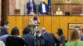 El presidente andaluz, Juanma Moreno y varios diputados buscando al roedor, que ha irrumpido en el Parlamento andaluz durante el inicio del pleno.