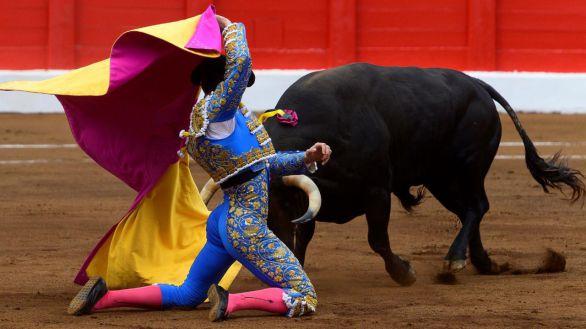 Los toros interesan a un 25 por ciento de la población española
