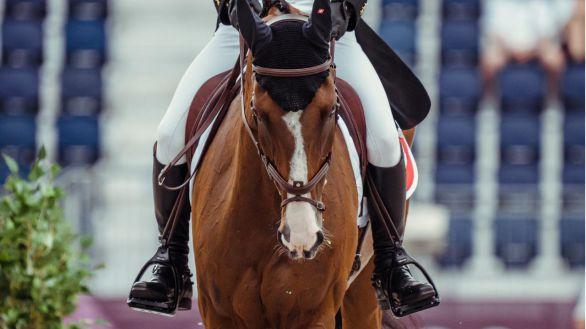 El caballo 'Jet Set', sacrificado tras caer lesionado en el concurso completo